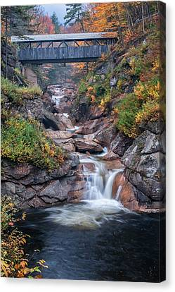 Sentinal Pine Bridge - White Mountains National Forest Canvas Print by Thomas Schoeller