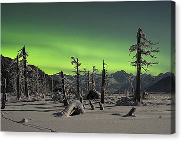 Everywhere The Signs Canvas Print by Ted Raynor