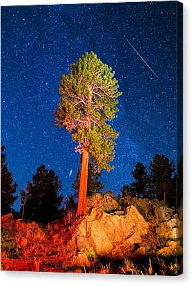 Andromeda Galaxy Canvas Print - Sentinel by Bryce Bradford