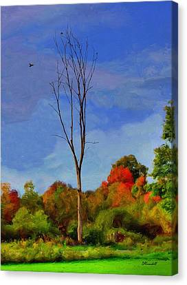 Sentinel Tree Canvas Print by Dennis Lundell