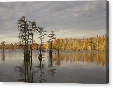 Sentinels Of The Lake Canvas Print