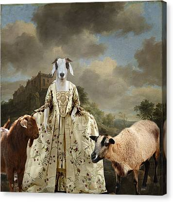 Separating The Sheep From The Goats Canvas Print by Terry Fleckney