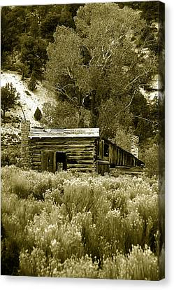 Sepia Country Cabin Canvas Print