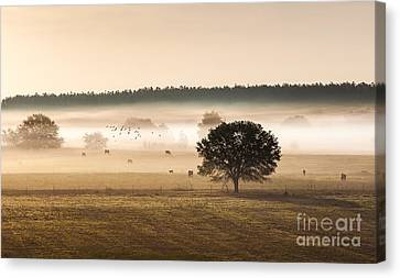 Sepia Landscape From 500 Feet Canvas Print
