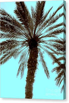Canvas Print featuring the photograph Sepia Palm by Jeanne Forsythe