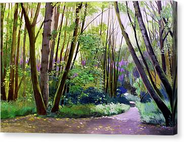 September In Springbrook Park Canvas Print by Melody Cleary