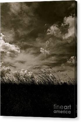 September Sky Canvas Print by Tim Good
