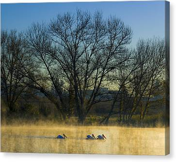 Sepulveda Dam At Dawn On New Year's Day 2015 Canvas Print by Joe Doherty