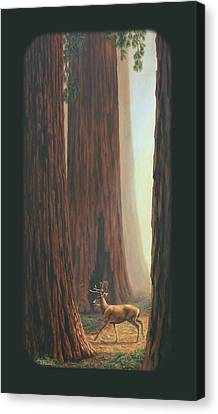 Sequoia Blacktail Deer Phone Case Canvas Print by Crista Forest