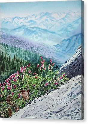 Sequoia National Park Canvas Print by Irina Sztukowski