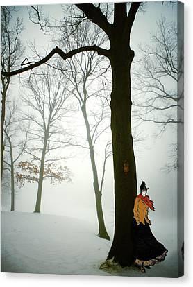 Serenade D'hiver Canvas Print by Natasha Marco