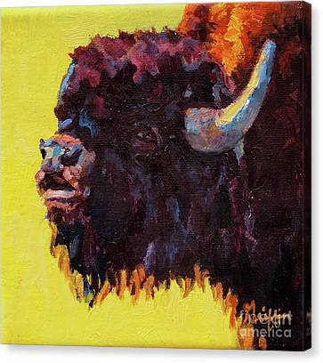 Bison Canvas Print - Serenade by Patricia A Griffin