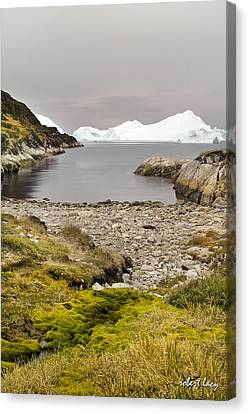 Serene But Dangerous Canvas Print by Robert Lacy