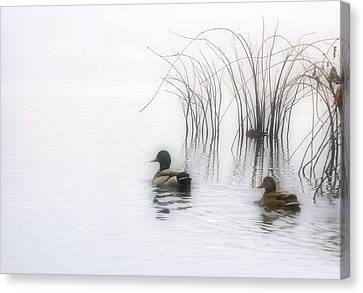 Serene Moments Canvas Print
