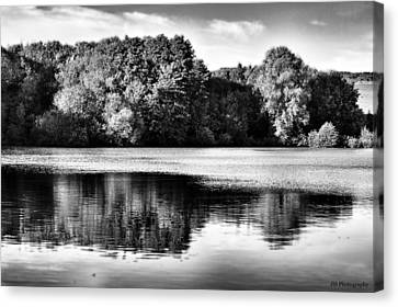 Serene Reflection Canvas Print by Jay Harrison