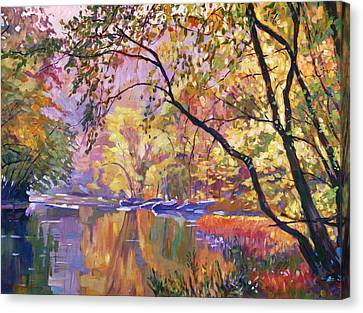 Serene Reflections Canvas Print by David Lloyd Glover