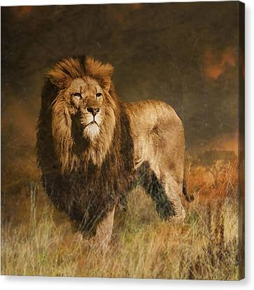 Canvas Print featuring the photograph Serengeti Sunset by Brian Tarr