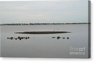 Michael Canvas Print - Serenity And The Sandbar by Michael Penn