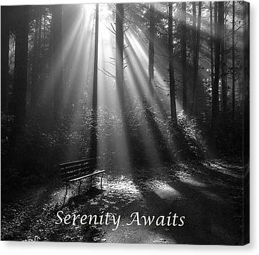 Serenity Awaits Canvas Print