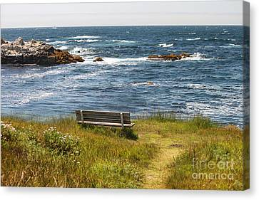 Serenity Bench Canvas Print by Bev Conover