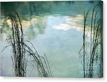 Serenity Canvas Print by Doug Sturgess
