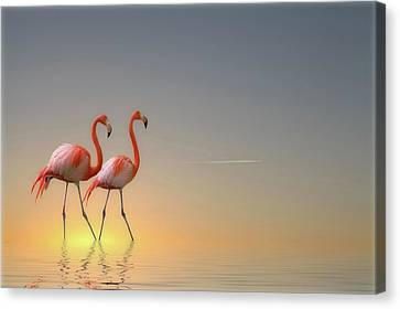 Pairs Canvas Print - Serenity II by Anna Cseresnjes