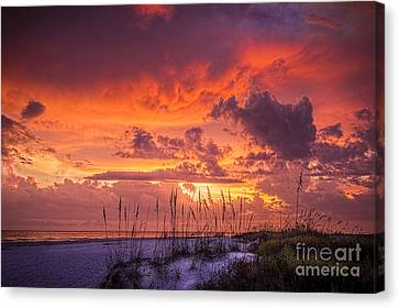 Serenity Canvas Print by Marvin Spates