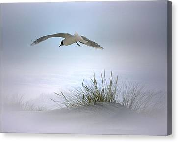 Canvas Print featuring the digital art Serenity by Nina Bradica
