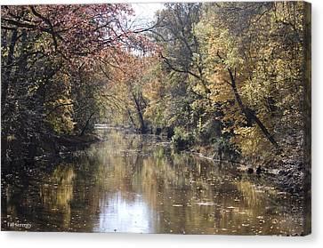 Serenity River Canvas Print by Nancy Edwards