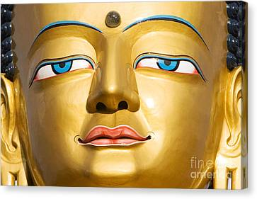 Third Eye Canvas Print - Serenity  by Tim Gainey
