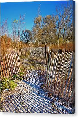 Serenity Trail.... Canvas Print by Nina Stavlund