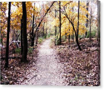 Canvas Print featuring the photograph Serenity Walk In The Woods by Peggy Franz