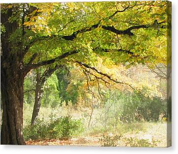 Serenity Canvas Print by Wendy J St Christopher