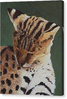 Canvas Print featuring the painting Serval Nap by Margaret Saheed