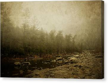 Set In Fog Canvas Print by Kathy Jennings