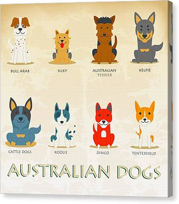 Set Of Australian Dogs Canvas Print by Don Kuing