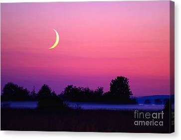 Setting Crescent Moon At Dusk Canvas Print by Douglas Taylor