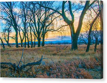 Setting Sun At Rocky Mountain Arsenal_1 Canvas Print