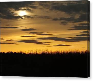 Canvas Print featuring the photograph Setting Sun by Gene Cyr