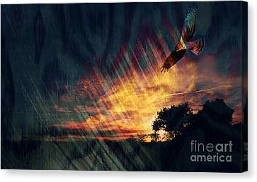 Setting Sun Canvas Print by Robert Ball