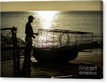 Setting Traps Canvas Print by Rene Triay Photography