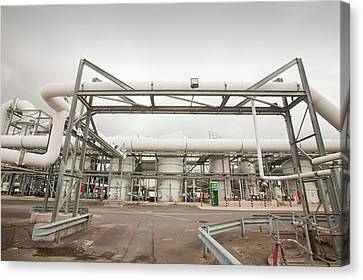 Sewage Odour Suppressant Plant Canvas Print by Ashley Cooper