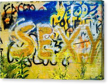 Sexy Graffiti Canvas Print by Amy Cicconi