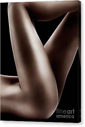 Sexy Nude Woman Legs On Black Canvas Print