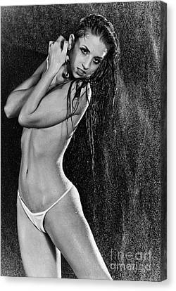 Sexy Wet 2 Canvas Print by Jt PhotoDesign