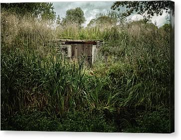 Shack In The Park Canvas Print by Joan Carroll
