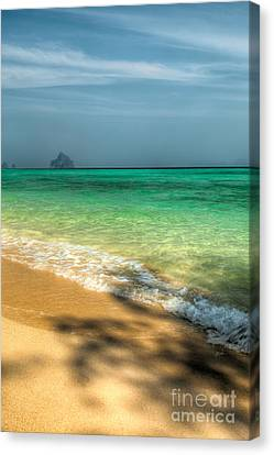 Shaded Beach Canvas Print by Adrian Evans
