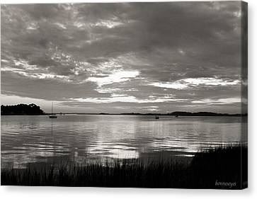Shaded Marsh Canvas Print by Bonnes Eyes Fine Art Photography