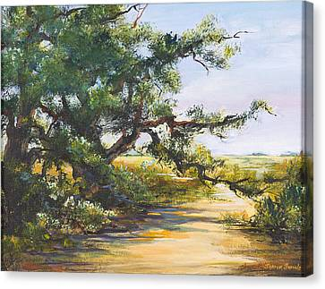 Shaded Path Canvas Print