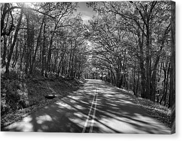 Shaded Rd Bw Canvas Print by Patrick M Lynch